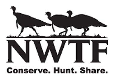 2017-NWFT-Logo.jpg